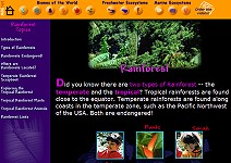 Primary homework help rainforest