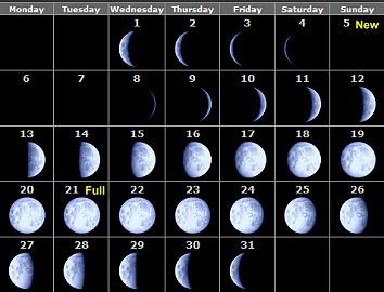 Primary homework help moon