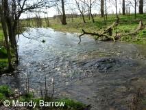 Primary homework help rivers