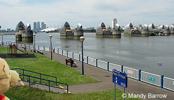 primary homework help river thames