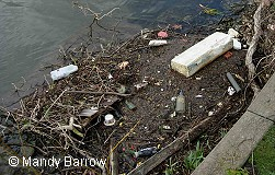 Primary homework help river pollution