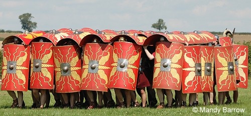 roman army tortoise formation W hat was the main occupation of romans like julius caesar you guessed it - war ancient roman army formations are legendary and still enthrall me beyond belief the well known ones are the pig's head and testudo (the tortoise.